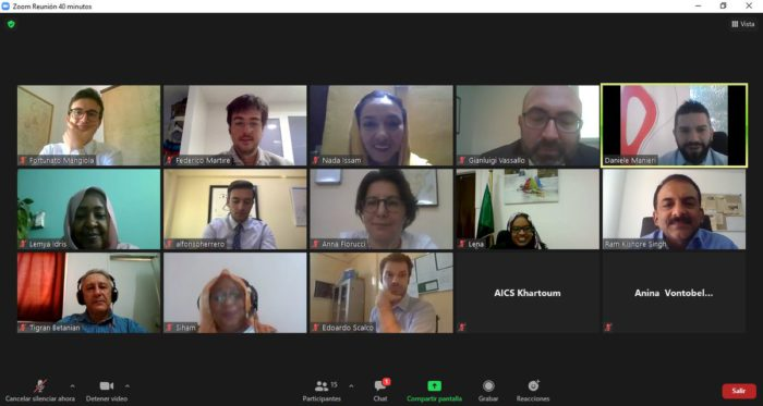 screenshot with the attendees of the Group of Friends of Persons with Disabilities online meeting